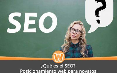 ¿Qué es el SEO? Posicionamiento web para novatos