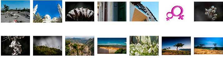 bancos de fotos gratis free images