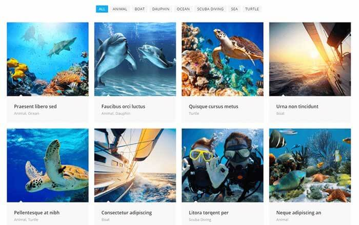 ocean wp wordpress instagram